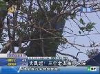 济南:大风起!三个老太被吓入院