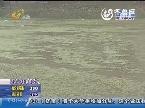 新泰市追踪:神秘水漩涡揭秘