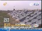 济南:靠信誉 卖粉皮不用打欠条