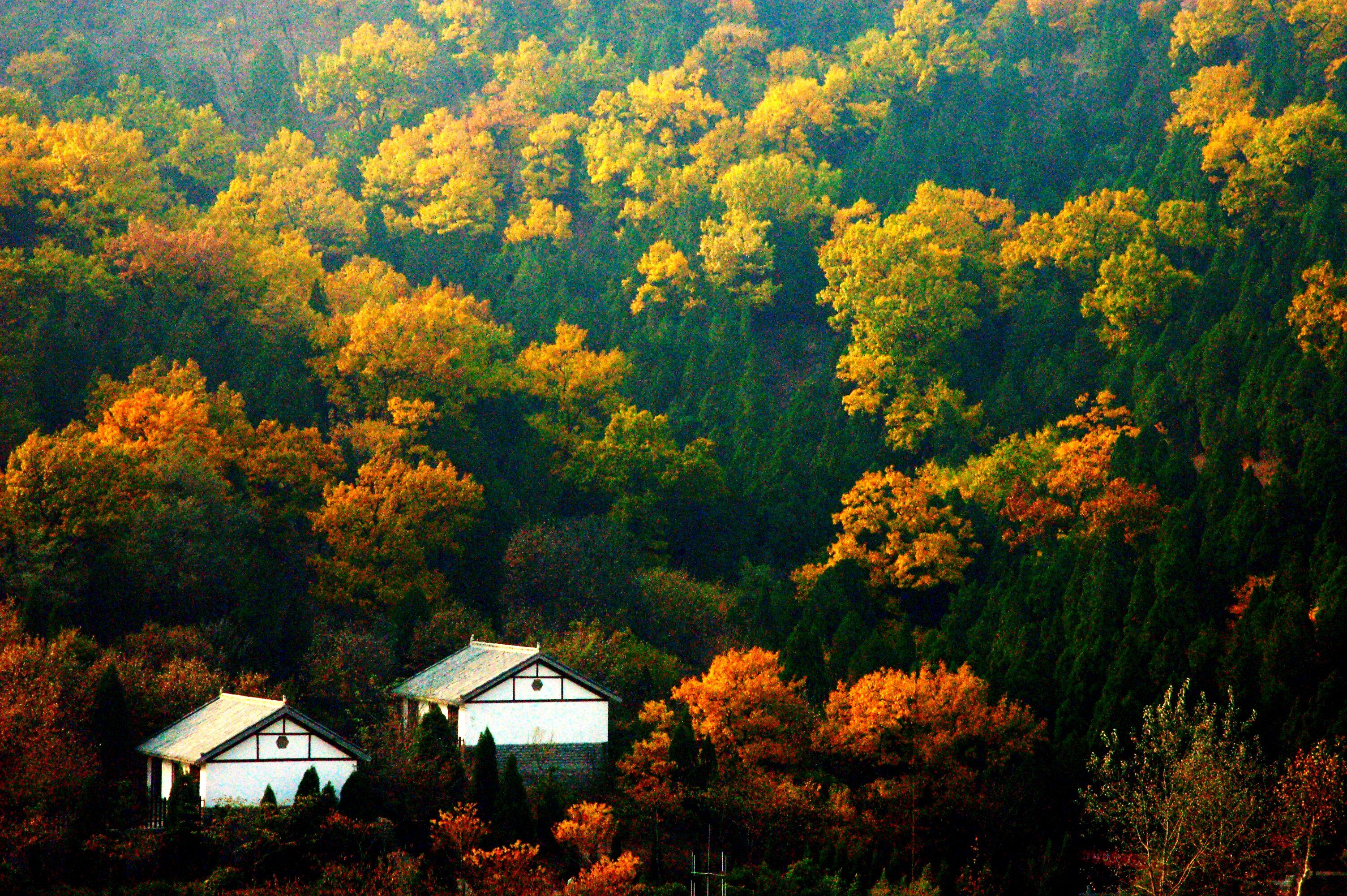中国迷人的风景介绍