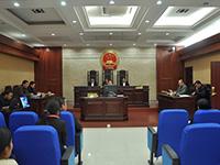 庭审直播(第10期):中国银行日照分行诉赵维等借款合同纠纷案