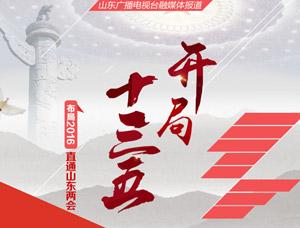 回顾:山东省政协十一届四次会议开幕会