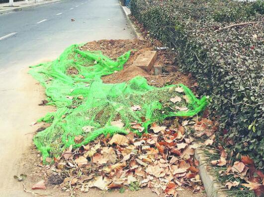 张店金晶大道一处绿化带施工挖土堆路面留隐患