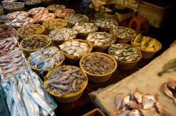 淄博海鲜市场元旦起进入购销旺季 价格将会继续小幅上涨