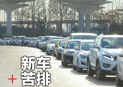元旦前突击购车如今扎堆挂牌 济南车主凌晨排队挤不进前十名