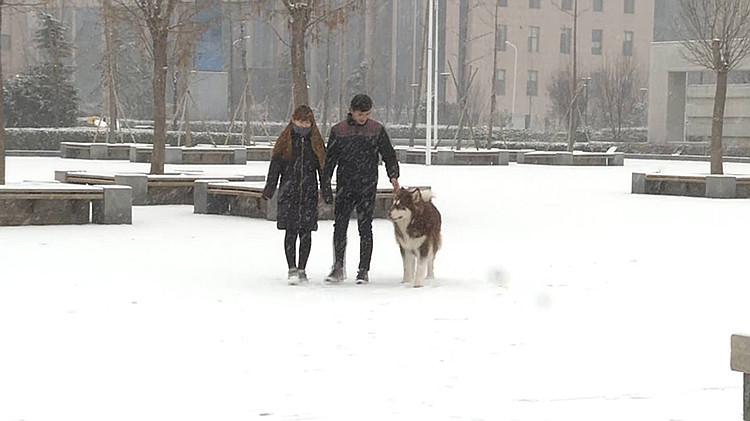 降雪5_副本.jpg