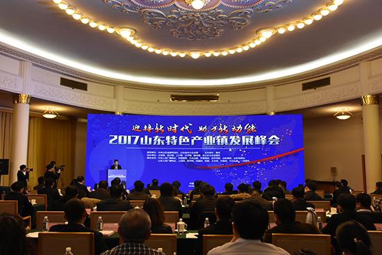 2017山东特色产业镇发展峰会在济南举行