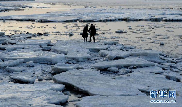 海冰涌上岸边 渤海现极地冰原景观
