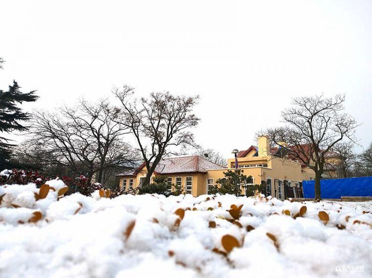 雪后老城区美如画 全城追雪哪一款才是你最爱