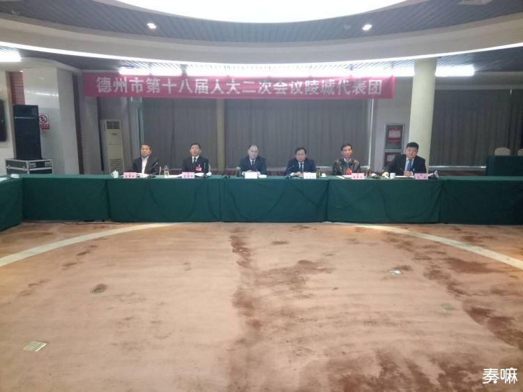 韩建亭到陵城代表团审议政府工作报告