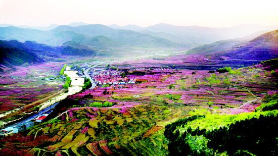 博山区池上镇生态革命:打造零污染镇村