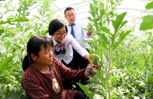 助力农业供给侧改革