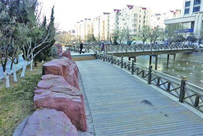 惠民!海泊河沿线将建樱花大道 今年4月完工