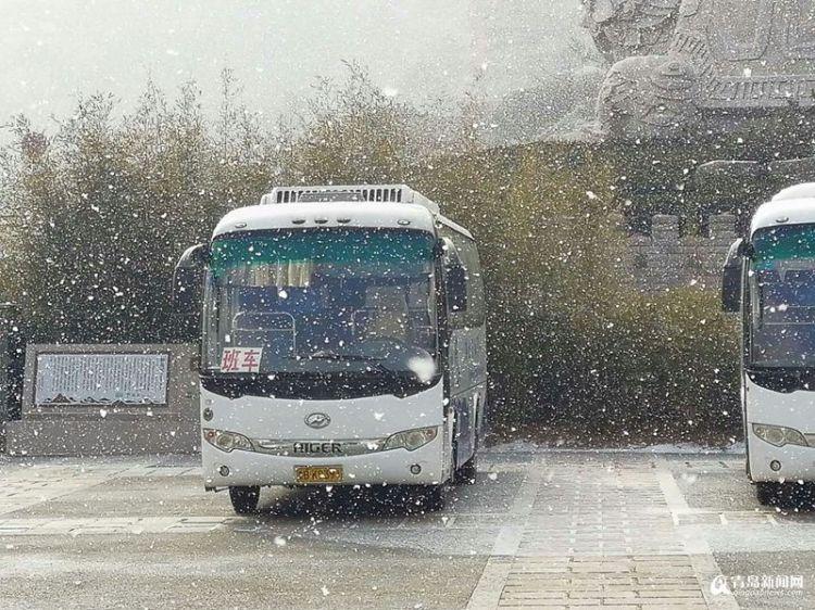 首发:青岛上午再飘雪 市区多地鹅毛漫天
