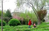 淄博周村区天香法治文化公园完成升级改造