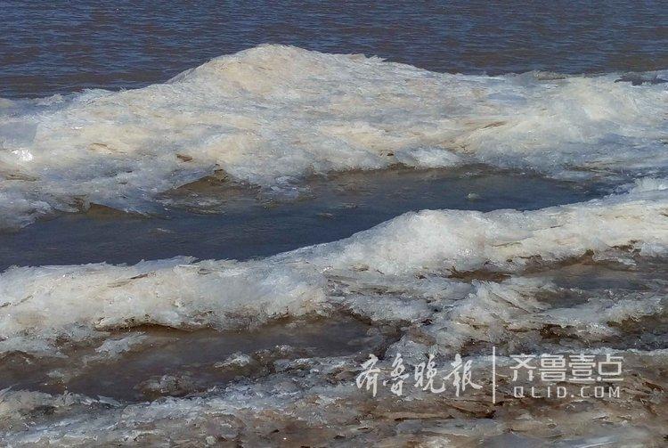 持续低温,黄河济南段首现轻度淌凌