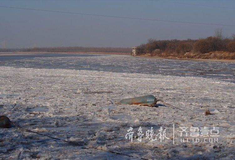 奔腾如野马!黄河济南段冰凌发展迅猛