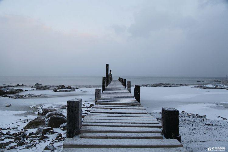 瑞雪过后,青岛海边村庄美成了水墨画