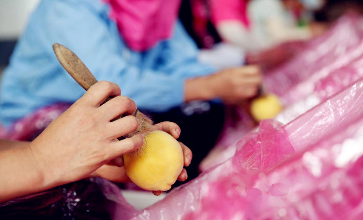 沂蒙老区村支书带领农户种桃致富 销往迪拜成全国蜜桃最大出口商