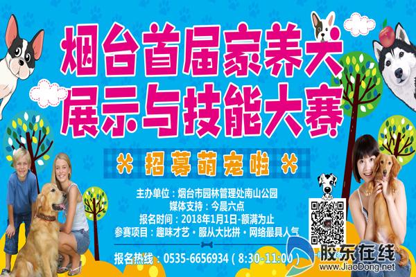 赢动物园畅玩年卡 南山公园春节期间将举办犬类趣味大赛
