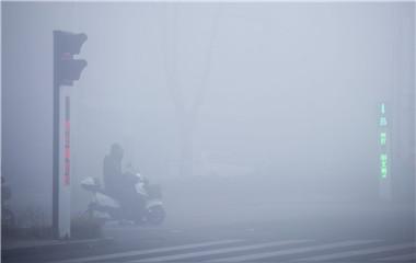 强浓雾来袭!菏泽今晨大雾能见度不足50米