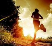 委员建议在文昌湖环湖公路举办马拉松赛事