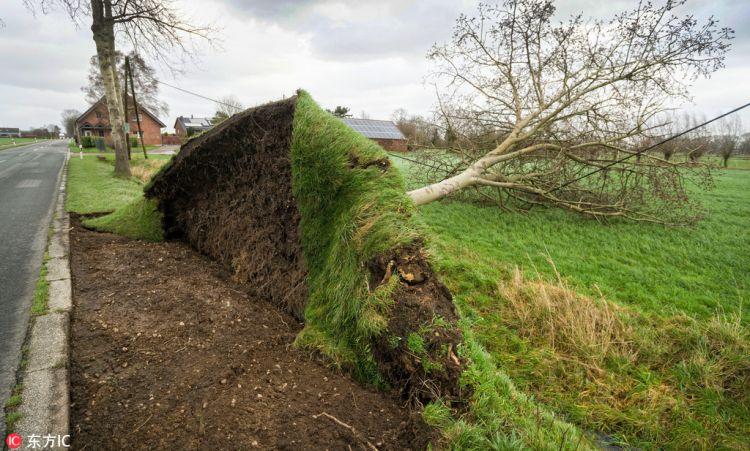 德国遭最高等级飓风袭击 全国交通瘫痪草坪被掀飞