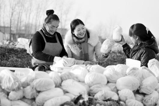 山东发文:四种业态推进农村三次产业融合发展