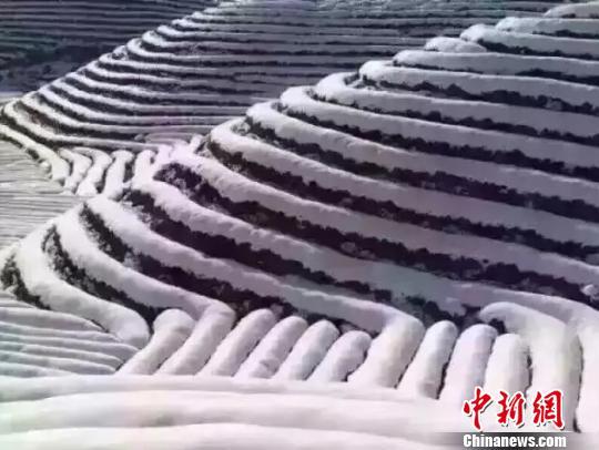 浙江迎低温雨雪天气 多部门启动应对措施