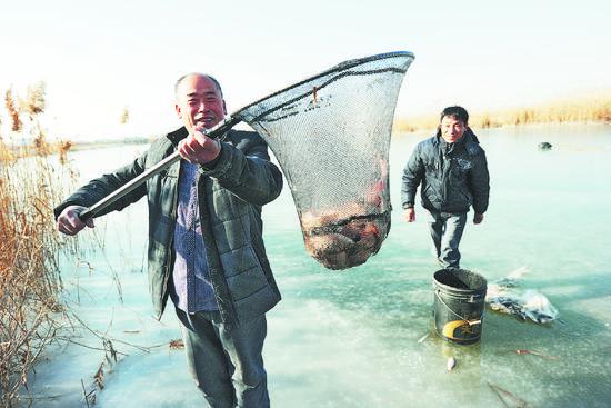 桓台马踏湖区 捕鱼人冰上捕鱼忙