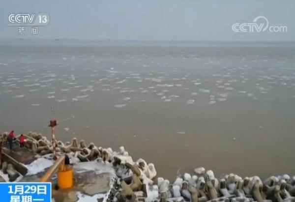 莱州湾海冰面积超2000平方公里,油田渔船停止作业