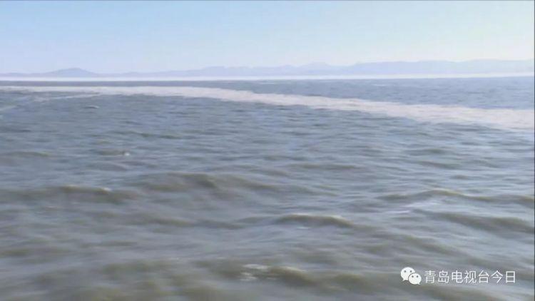 超震撼 记者随海警1401船探访黄渤海海冰(图)