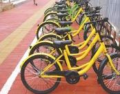 淄博高新区3月底前完成共享单车停放点划线