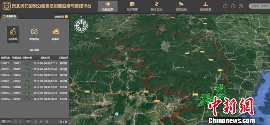 东北虎豹国家公园自然资源监测系统开通:看得见虎豹