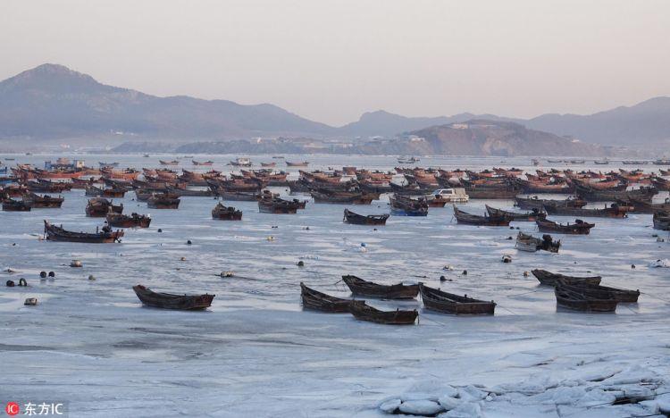 黄渤海进入严重冰期 辽东湾海冰近60海里