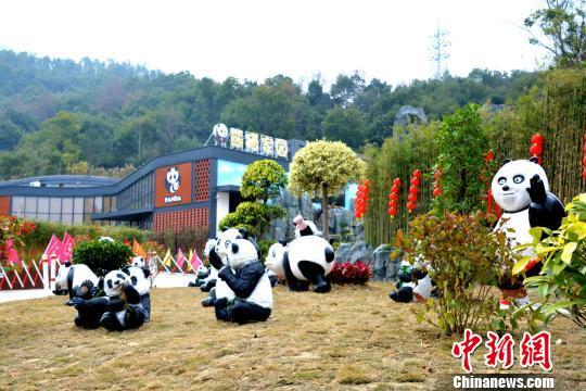 据悉,泉州海丝野生动物世界熊猫家园于2017年7月开工建设,2017年12月