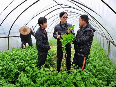 聊城:2018年全市农业科技人员下乡服务活动全面启动