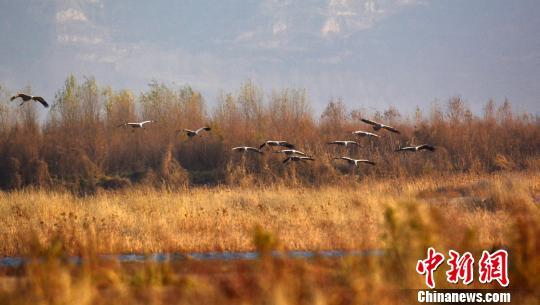 京津冀等15省份划定生态保护红线 占总面积的1/4