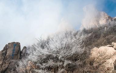 青岛崂山现雾凇奇观 云雾缭绕似仙山圣境