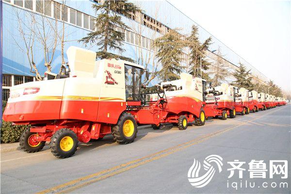 厂区内摆放整齐的雷沃谷神小麦机