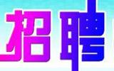 淄博事业单位招聘最热岗位竞争比达520:1