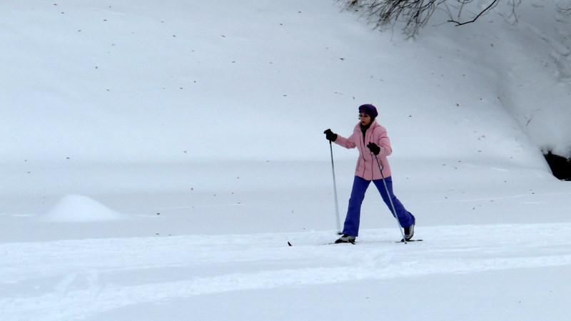 察里津诺皇家庄园的滑雪者