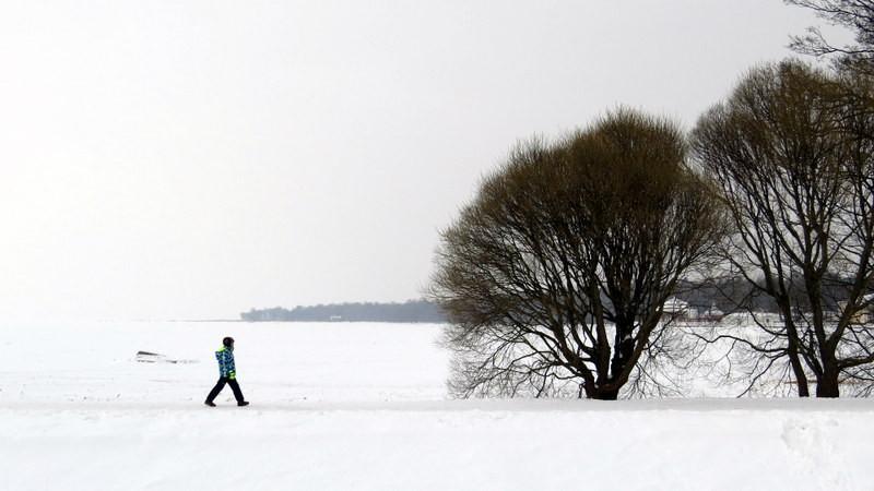 封冻的芬兰湾1