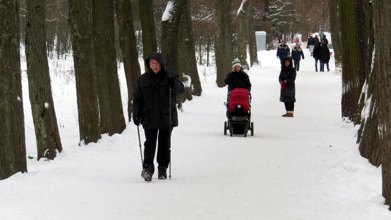 叶卡捷琳娜花园雪景