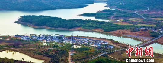 安徽2017年造林148万亩 全面停止天然林商业性采伐