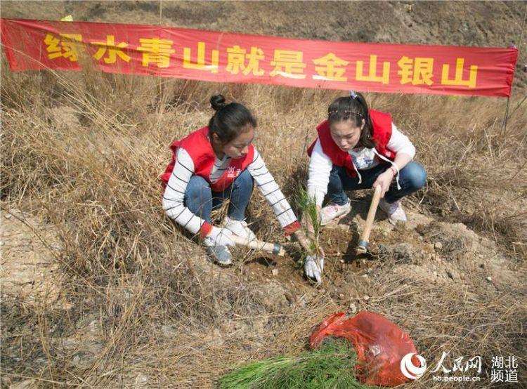 全国道德模范携手200余名志愿者在汉共植文明林