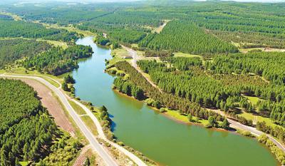 国际人士积极评价中国生态文明建设