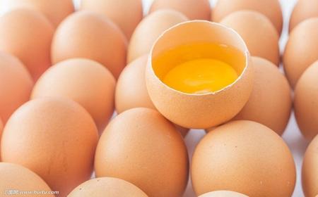 柴鸡蛋土鸡蛋营养效果差异小