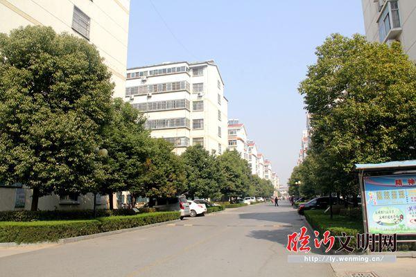 """临沂老城区""""巷长制""""推进社区文明创建 提升幸福指数"""