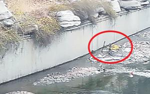 共享单车被弃河内引发市民谴责